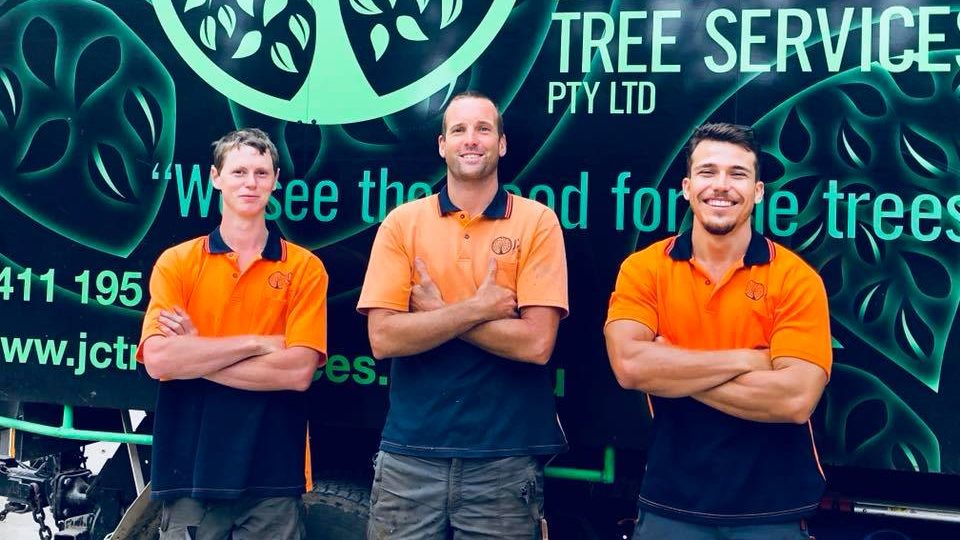 arborists gold coast