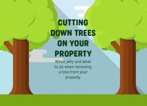Cutting down trees on your property