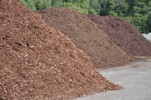 Free Mulch For Gold Coast Gardens!