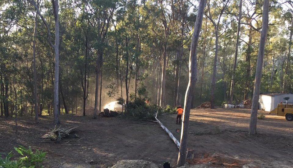 land clearing gold coast