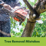 tree removal mistakes banner